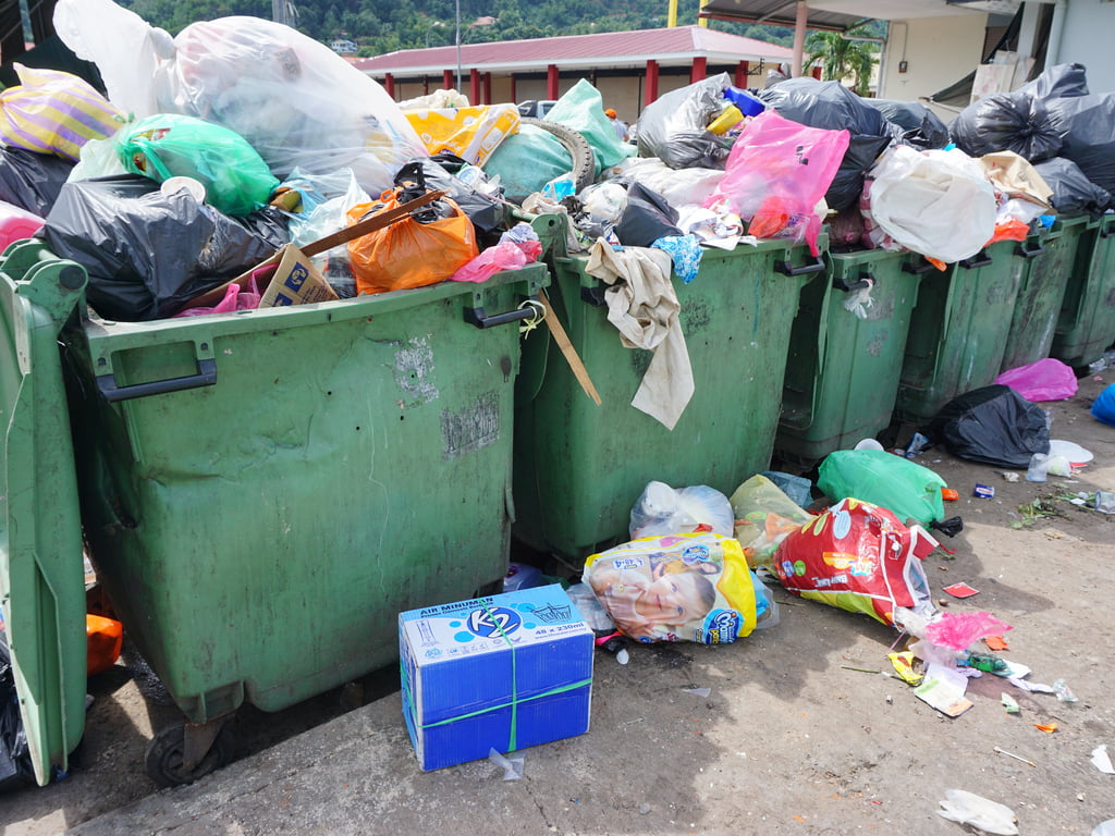 waste disposal - cleanbuild