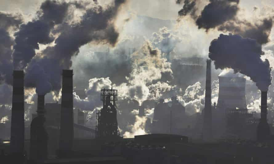 carbon report