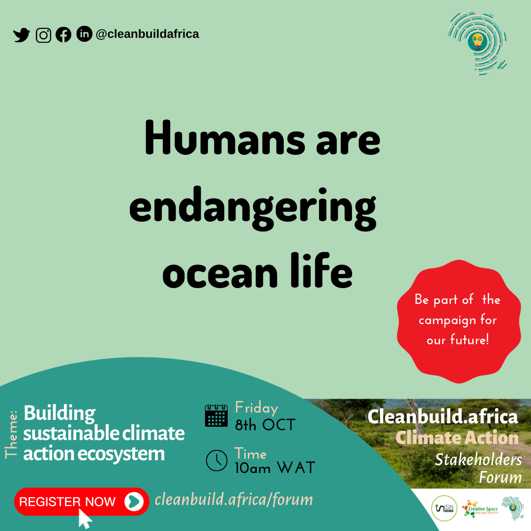 cleanbuild.africa-climate-action-1.png