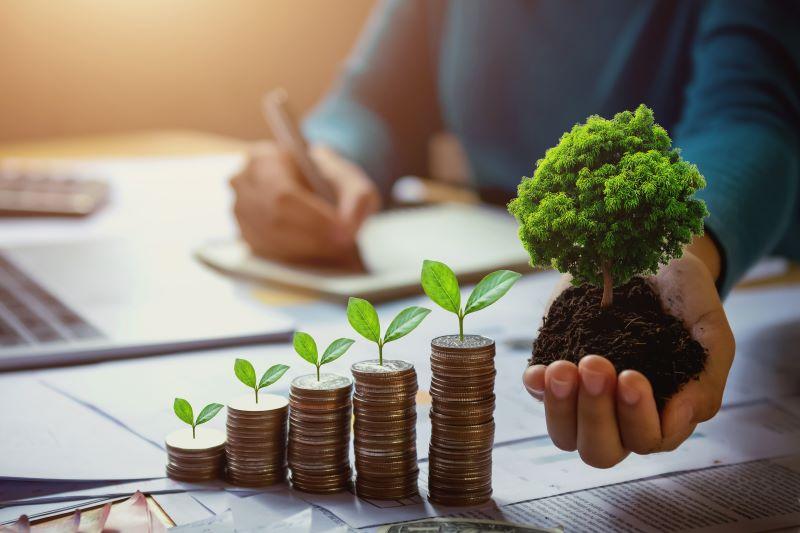 Climate Finance Accelerator - cleanbuild