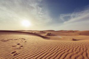 desert to power - cleanbuild