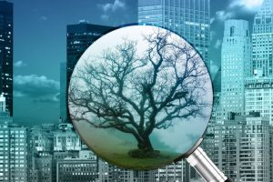 Clean energy - cleanbuild